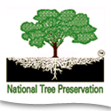 Nat Tree Preservation